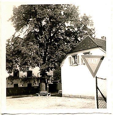 50er Jahre, Dorfplatz (Plätzel) mit alter Linde
